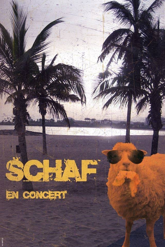 Pop Rock - Schaf Saint-Nazaire