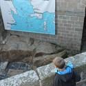 Le Léon à fer et à flots incluant la visite du château du Taureau
