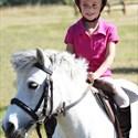Stages d'équitation pendant les vacances d'été
