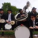 """""""Les dromaludaires"""", musique fun"""