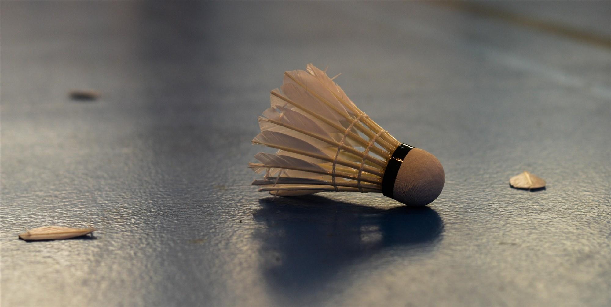22 Lannion - Tregor badminton
