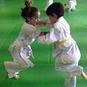 Judo-club 56 et arts martiaux : reprise des cours et initiations