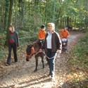 Balades à poneys avec les parents (ou grands-parents)