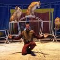 Cirque Mathieu Hart