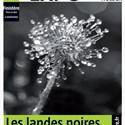 Exposition photographique « Landes noires »