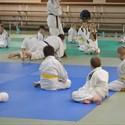 Stage multisport autour du judo pendant les vacances