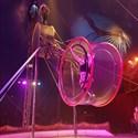 Le cirque Nicolas Zavatta Douchet de retour