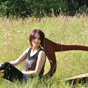 Stage de harpe celtique, pour débutants
