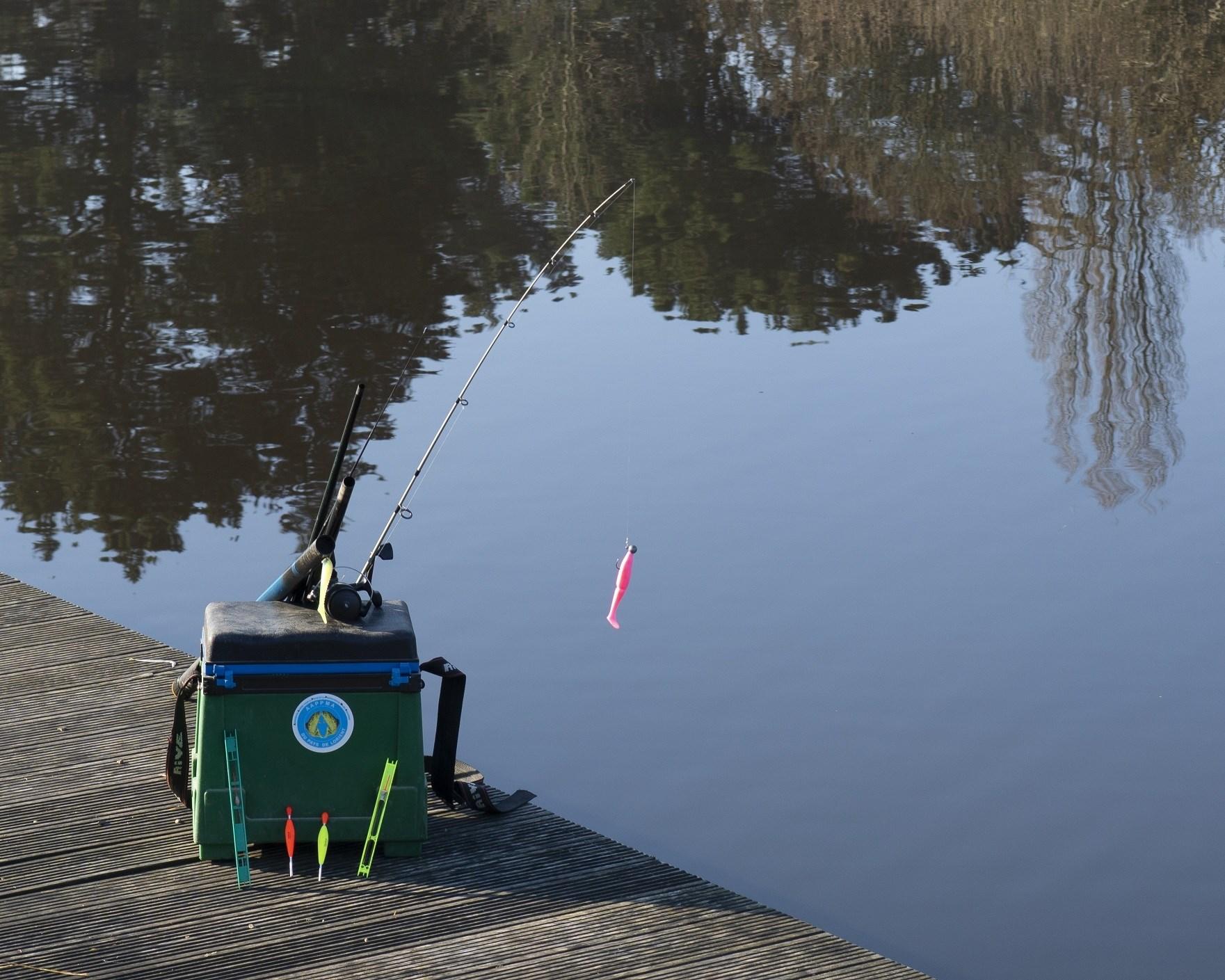 Image Pêche aux lignes en rivières et étangs
